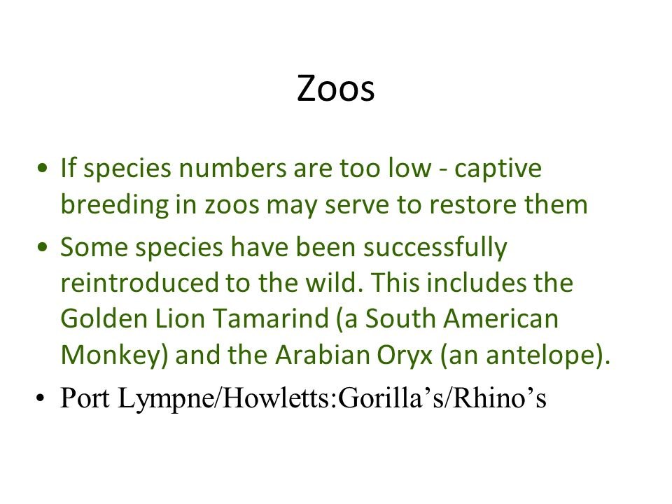Zoos If species numbers are too low - captive breeding in zoos may serve to restore them Some species have been successfully reintroduced to the wild.
