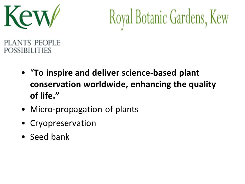 To inspire and deliver science-based plant conservation worldwide, enhancing the quality of life. Micro-propagation of plants Cryopreservation Seed ba
