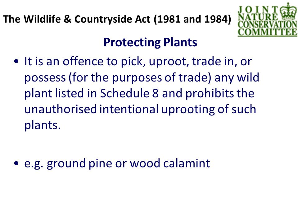The Wildlife & Countryside Act (1981 and 1984) Protecting Plants It is an offence to pick, uproot, trade in, or possess (for the purposes of trade) any wild plant listed in Schedule 8 and prohibits the unauthorised intentional uprooting of such plants.