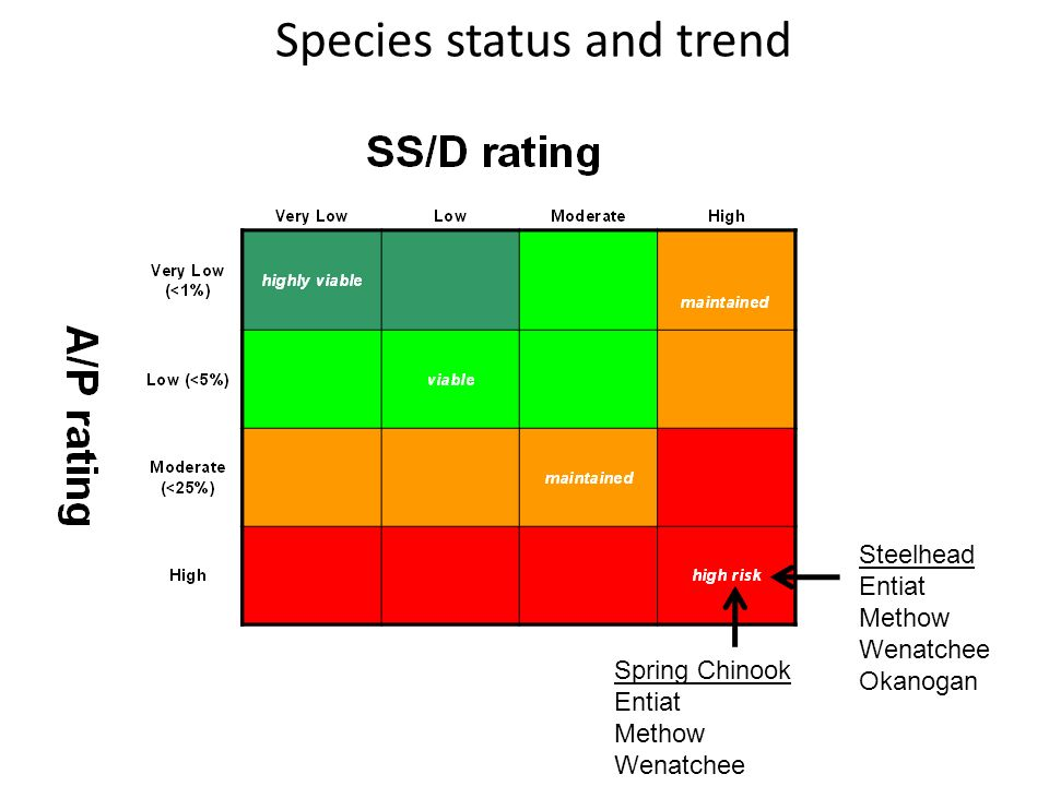 Species status and trend Steelhead Entiat Methow Wenatchee Okanogan Spring Chinook Entiat Methow Wenatchee