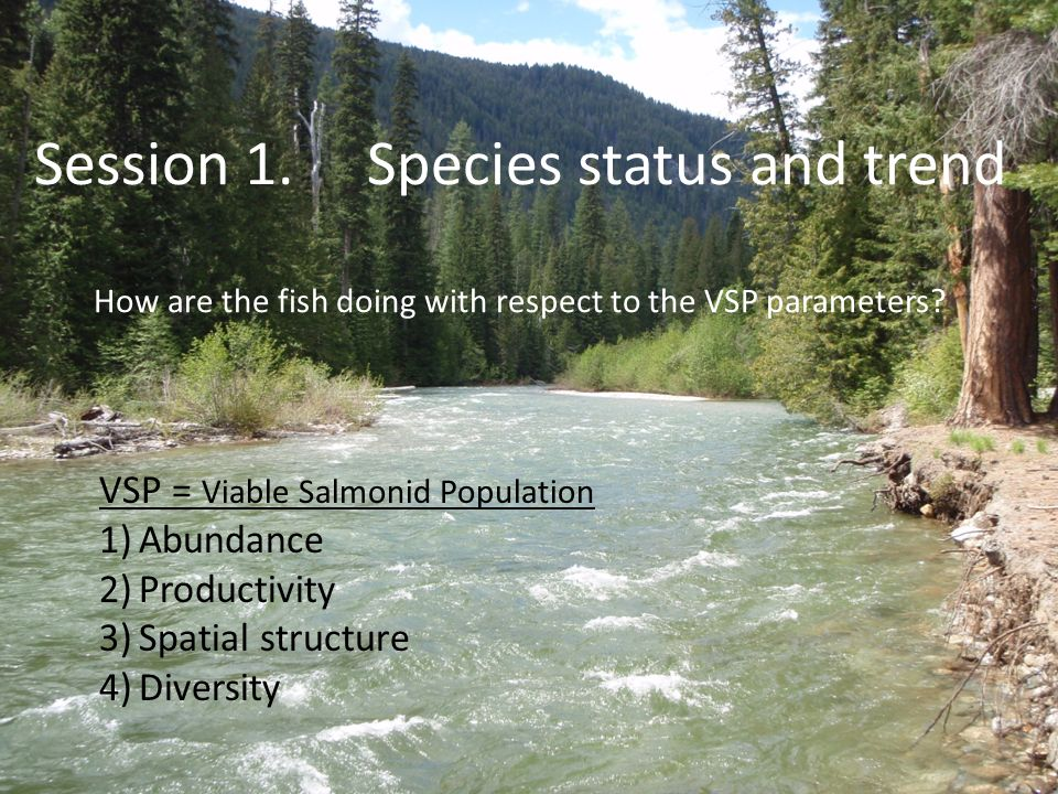Session 1. Species status and trend How are the fish doing with respect to the VSP parameters.