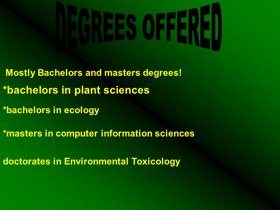Mostly Bachelors and masters degrees.