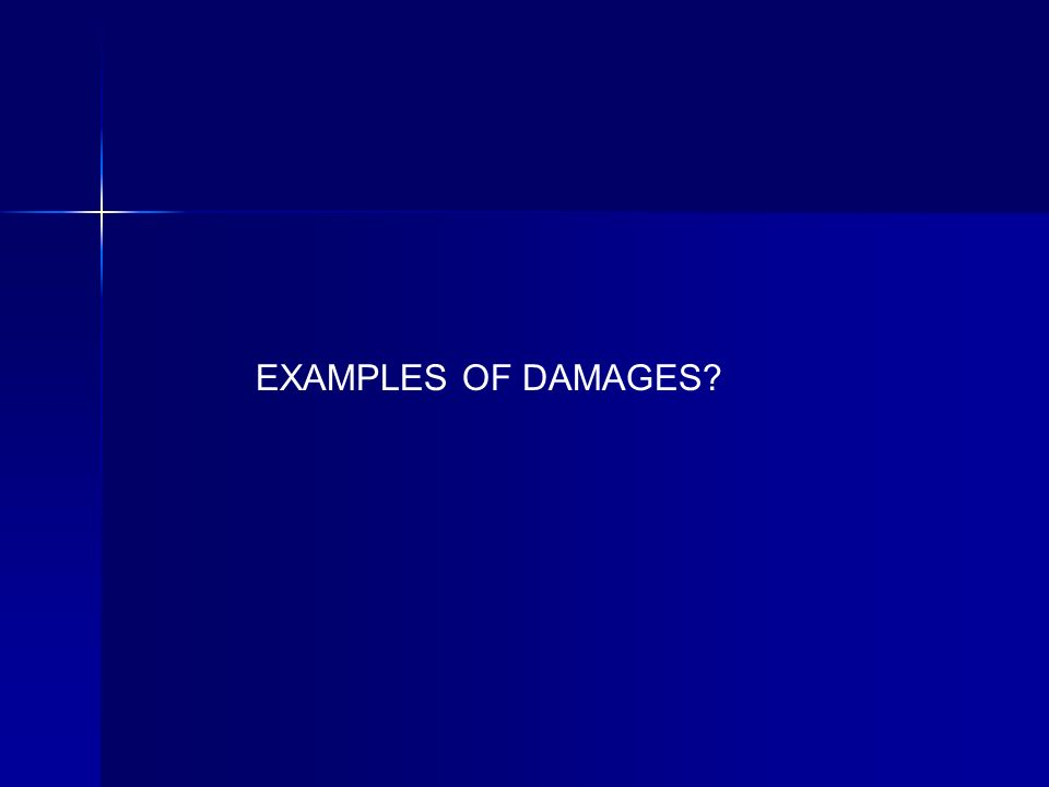 EXAMPLES OF DAMAGES?
