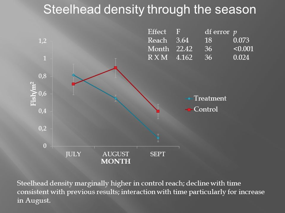 Steelhead density through the season EffectFdf error p Reach3.64180.073 Month22.4236<0.001 R X M4.162360.024 Steelhead density marginally higher in control reach; decline with time consistent with previous results; interaction with time particularly for increase in August.