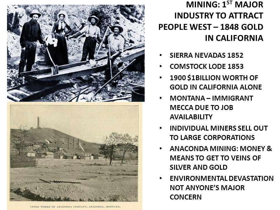 MINING: 1 ST MAJOR INDUSTRY TO ATTRACT PEOPLE WEST – 1848 GOLD IN CALIFORNIA SIERRA NEVADAS 1852 COMSTOCK LODE 1853 1900 $1BILLION WORTH OF GOLD IN CALIFORNIA ALONE MONTANA – IMMIGRANT MECCA DUE TO JOB AVAILABILITY INDIVIDUAL MINERS SELL OUT TO LARGE CORPORATIONS ANACONDA MINING: MONEY & MEANS TO GET TO VEINS OF SILVER AND GOLD ENVIRONMENTAL DEVASTATION NOT ANYONES MAJOR CONCERN