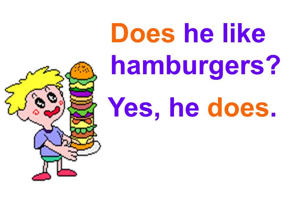 Does he / she like…? Yes, he / she does. No, he / she doesnt.