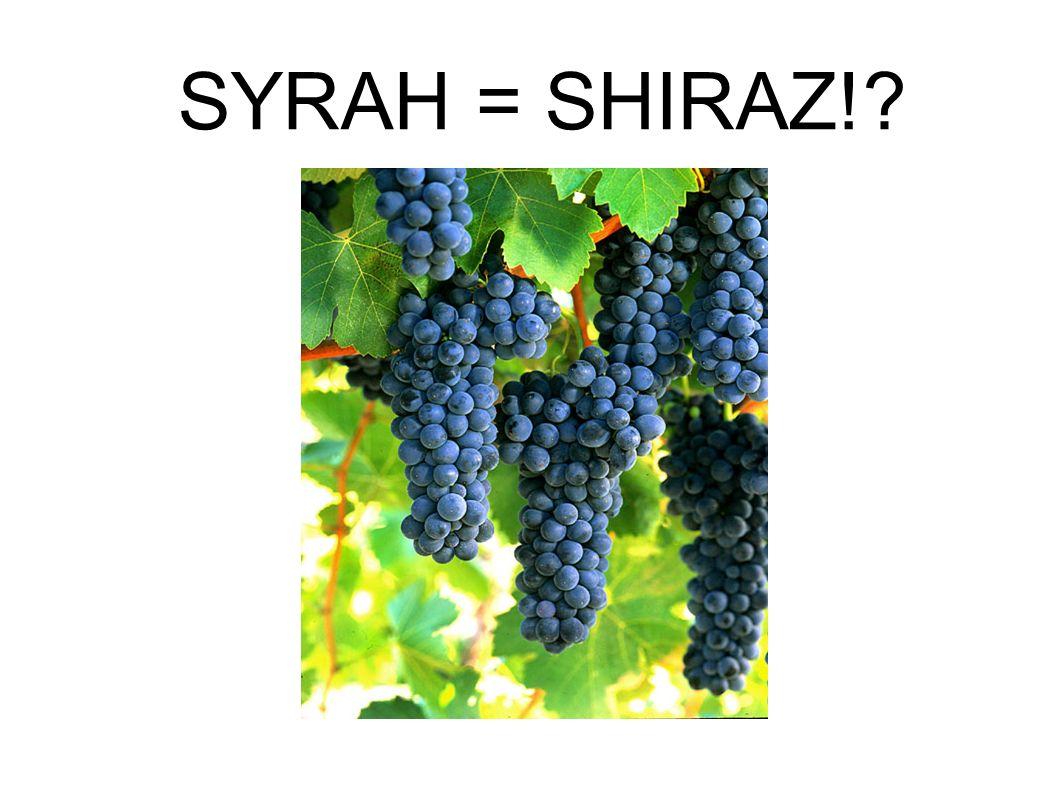 SYRAH = SHIRAZ!