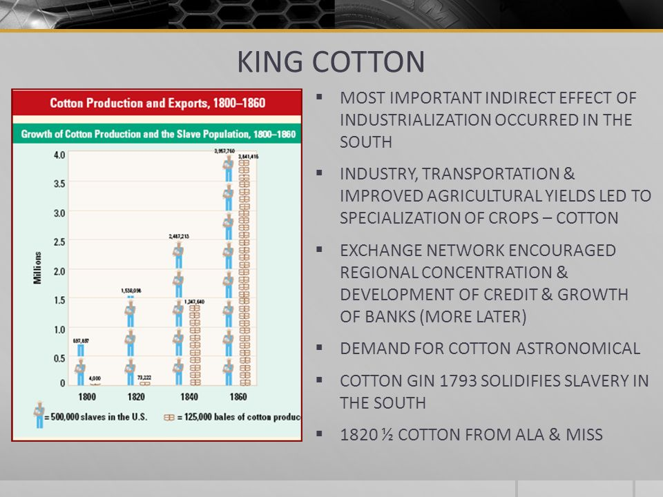 KING COTTON MOST IMPORTANT INDIRECT EFFECT OF INDUSTRIALIZATION OCCURRED IN THE SOUTH INDUSTRY, TRANSPORTATION & IMPROVED AGRICULTURAL YIELDS LED TO S