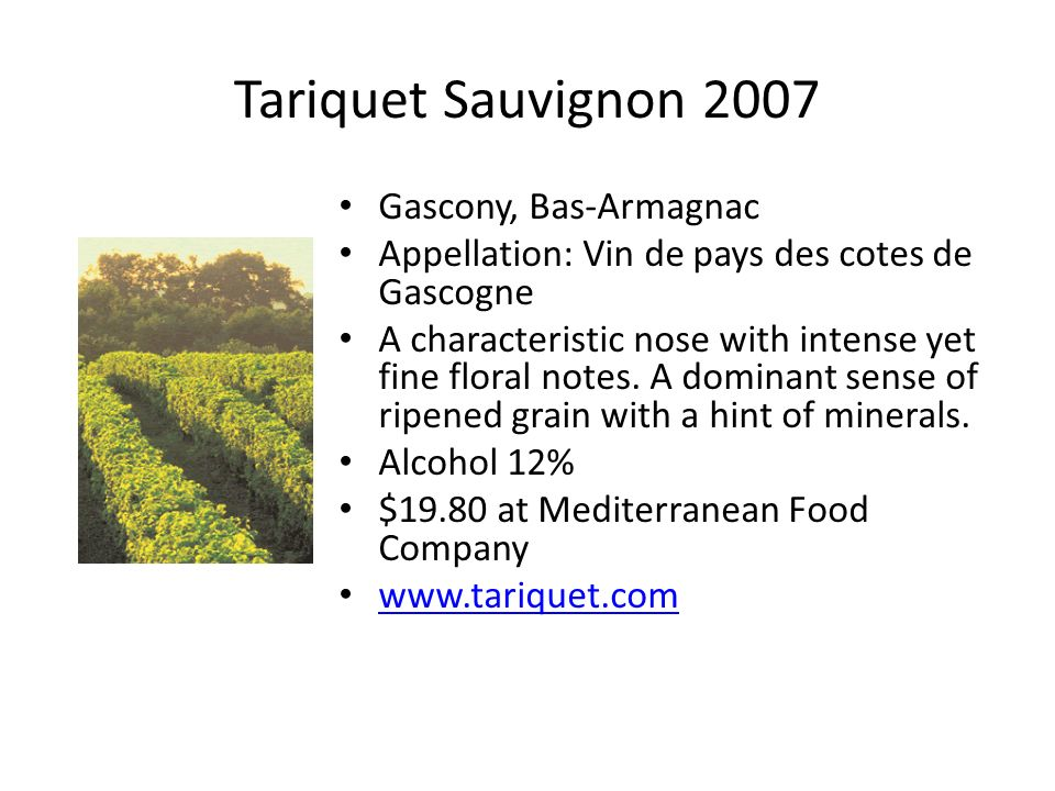 Tariquet Sauvignon 2007 Gascony, Bas-Armagnac Appellation: Vin de pays des cotes de Gascogne A characteristic nose with intense yet fine floral notes.