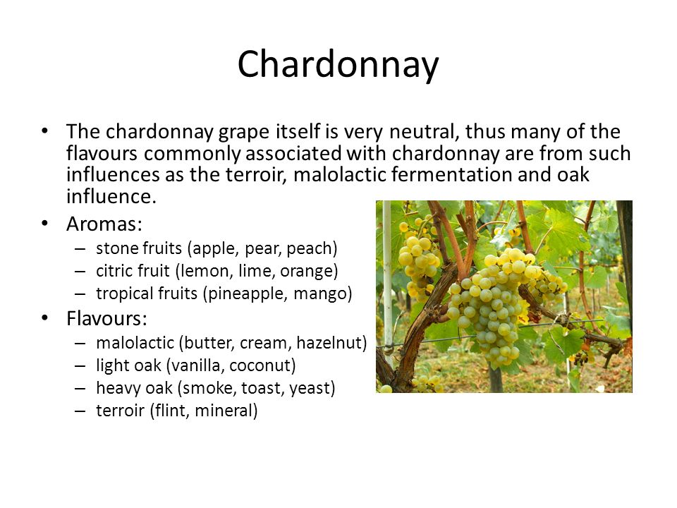 Chardonnay The chardonnay grape itself is very neutral, thus many of the flavours commonly associated with chardonnay are from such influences as the