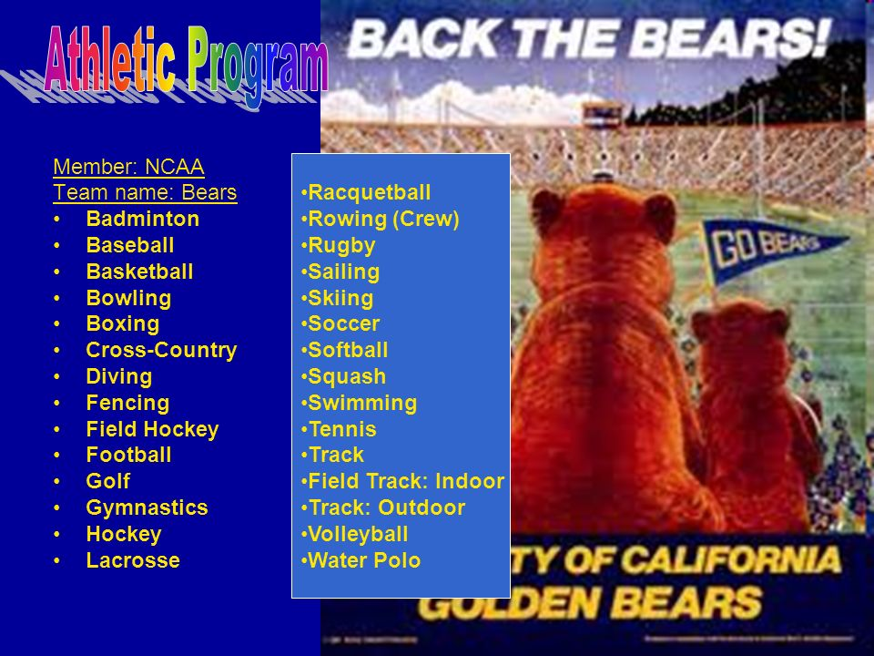 The mascot is Oski the Bear.He wears the colors: Yale Blue and California Gold.