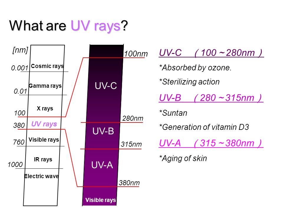 What are UV rays? UV-C UV-B UV-A Visible rays 100nm 280nm 315nm 380nm Cosmic rays Gamma rays X rays UV rays Visible rays IR rays Electric wave 760 380