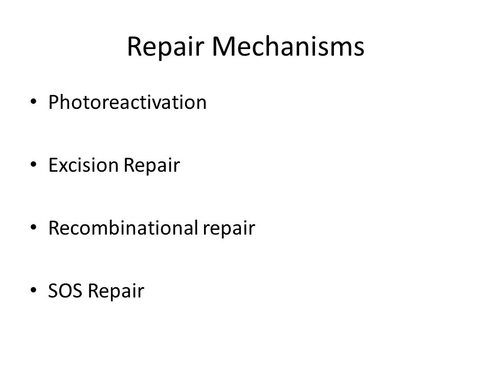 Repair Mechanisms Photoreactivation Excision Repair Recombinational repair SOS Repair