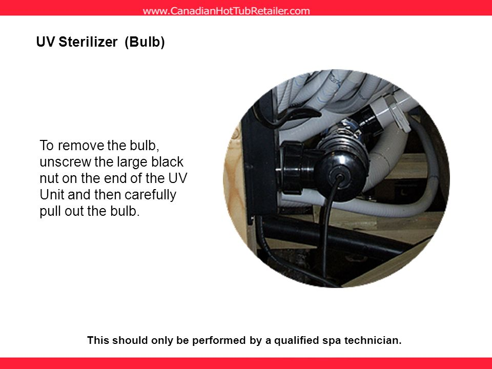 To remove the bulb, unscrew the large black nut on the end of the UV Unit and then carefully pull out the bulb. UV Sterilizer (Bulb) This should only