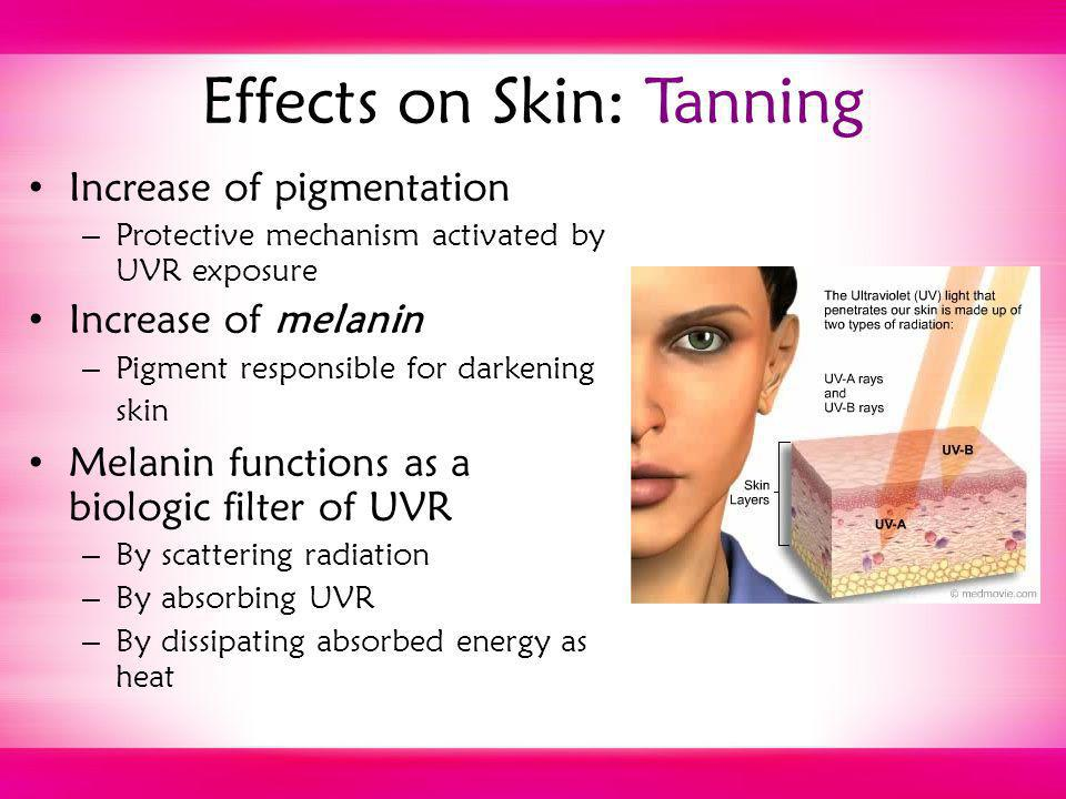 Effects on Skin: Tanning Increase of pigmentation – Protective mechanism activated by UVR exposure Increase of melanin – Pigment responsible for darke