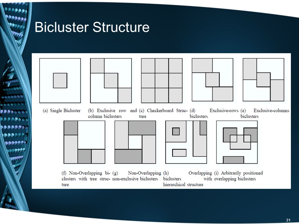 Bicluster Structure 31