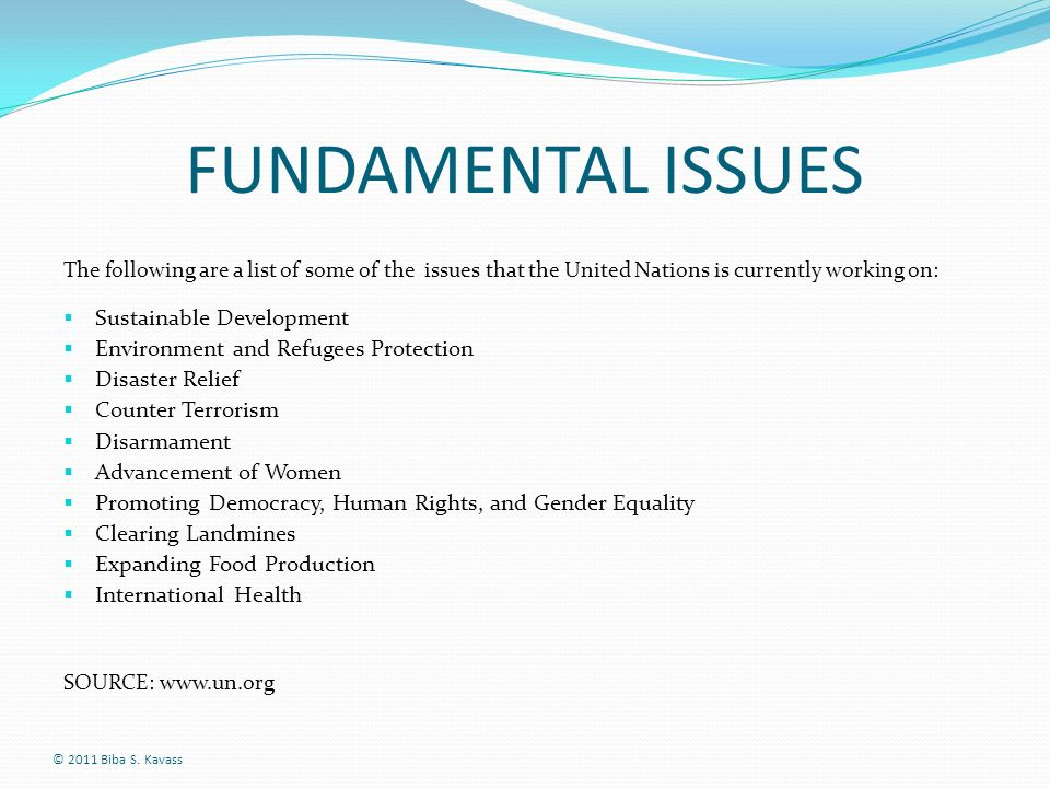 FUNDAMENTAL ISSUES The following are a list of some of the issues that the United Nations is currently working on: Sustainable Development Environment