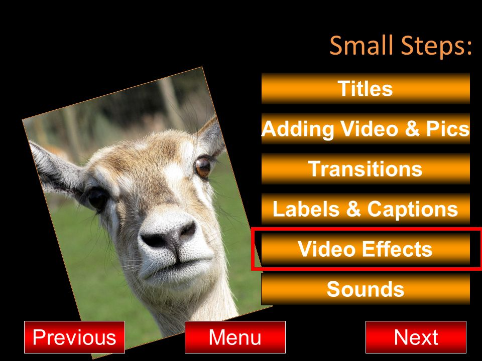 Small Steps: Titles Adding Video & Pics Transitions MenuNextPrevious Video Effects Sounds Labels & Captions