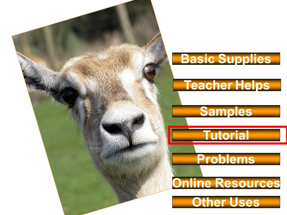 Basic Supplies Samples Tutorial Online Resources Teacher Helps Problems Other Uses
