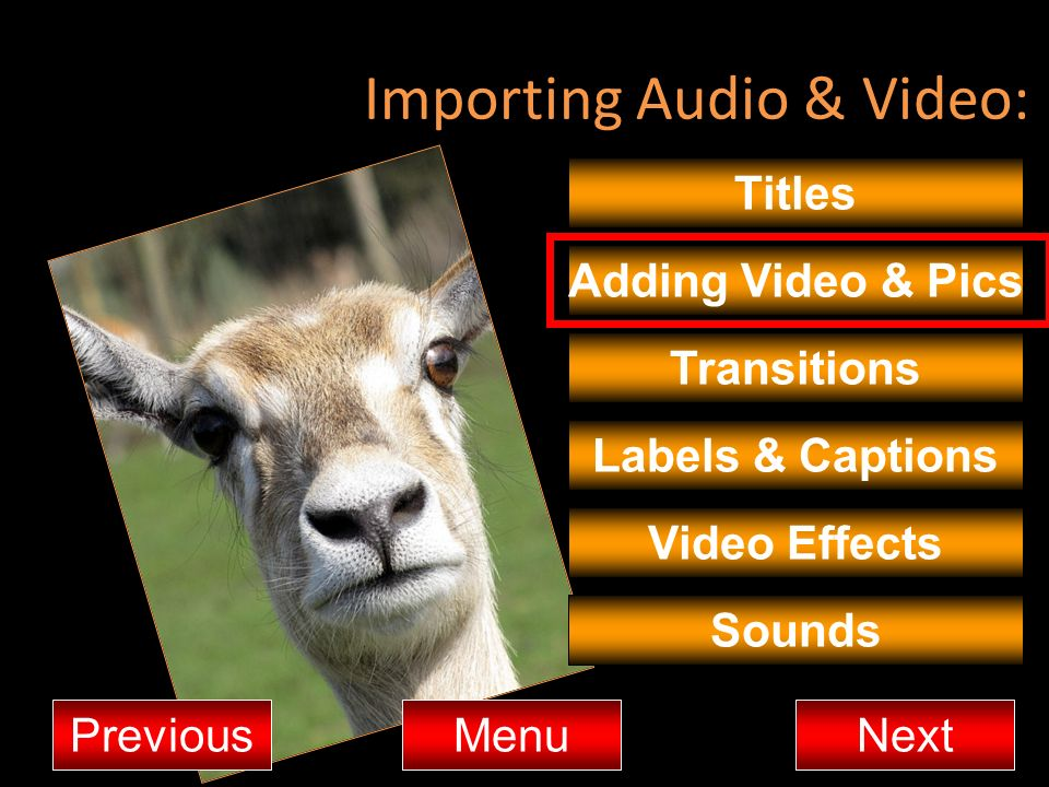 Importing Audio & Video: Titles Adding Video & Pics Transitions MenuNextPrevious Video Effects Sounds Labels & Captions