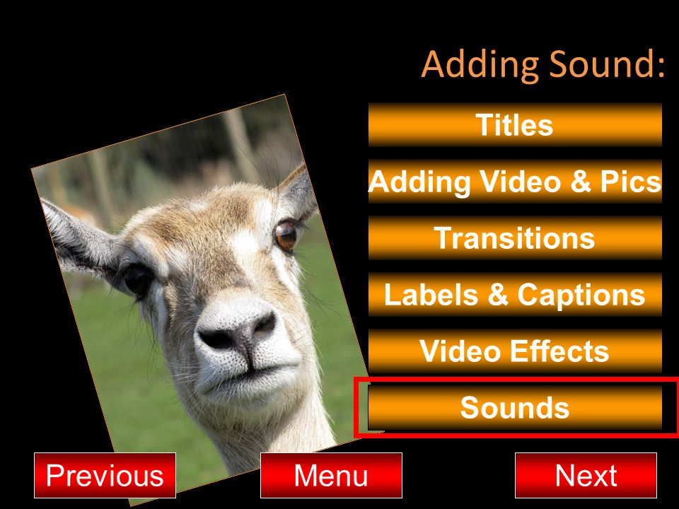 Adding Sound: Titles Adding Video & Pics Transitions MenuNextPrevious Video Effects Sounds Labels & Captions