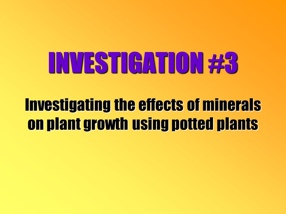 INVESTIGATION #3 Investigating the effects of minerals on plant growth using potted plants