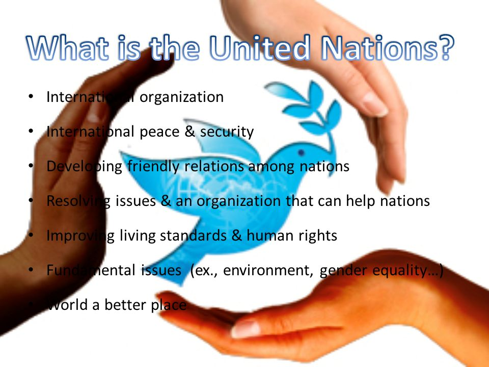 International organization International peace & security Developing friendly relations among nations Resolving issues & an organization that can help nations Improving living standards & human rights Fundamental issues (ex., environment, gender equality…) World a better place