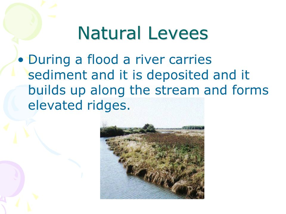 Natural Levees During a flood a river carries sediment and it is deposited and it builds up along the stream and forms elevated ridges.