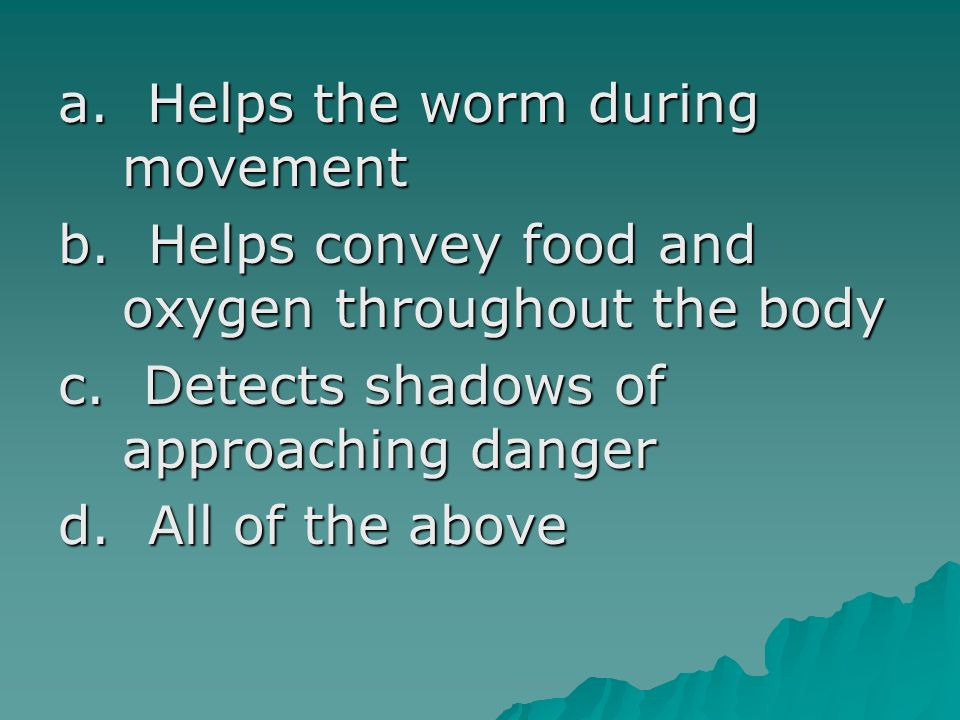 a. Helps the worm during movement b. Helps convey food and oxygen throughout the body c. Detects shadows of approaching danger d. All of the above