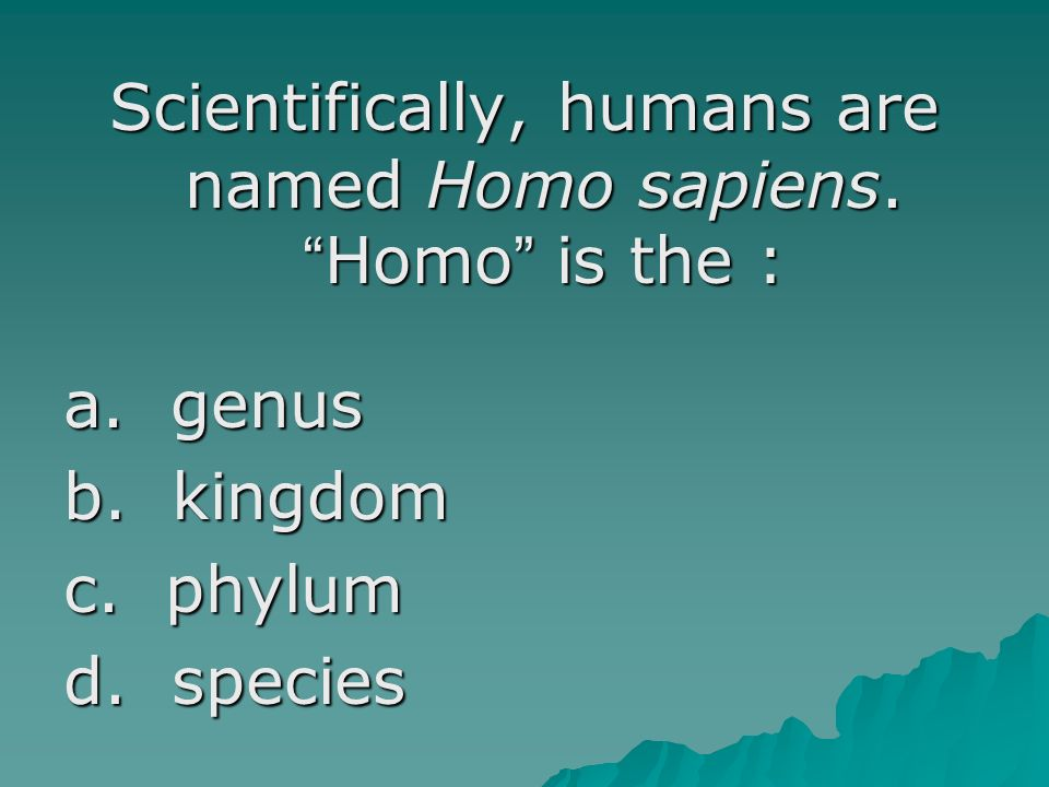 Scientifically, humans are named Homo sapiens. Homo is the : a. genus b. kingdom c. phylum d. species