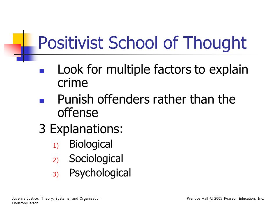 Juvenile Justice: Theory, Systems, and Organization Houston/Barton Prentice Hall © 2005 Pearson Education, Inc. Positivist School of Thought Look for