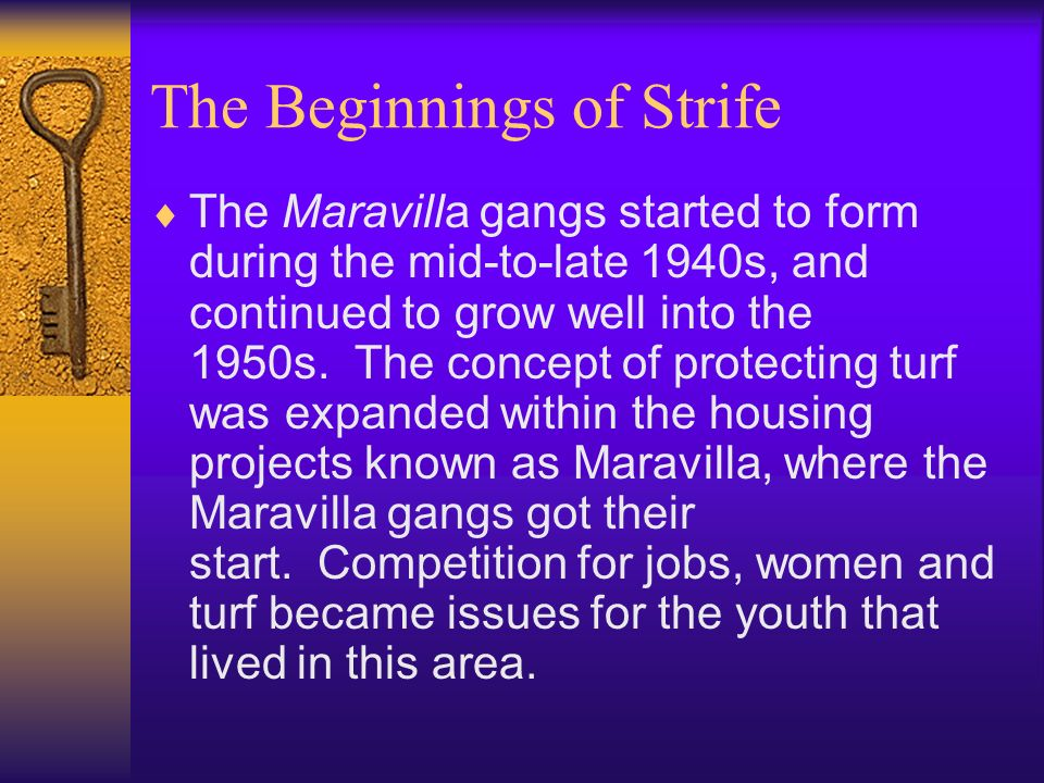 The Beginnings of Strife The Maravilla gangs started to form during the mid-to-late 1940s, and continued to grow well into the 1950s.
