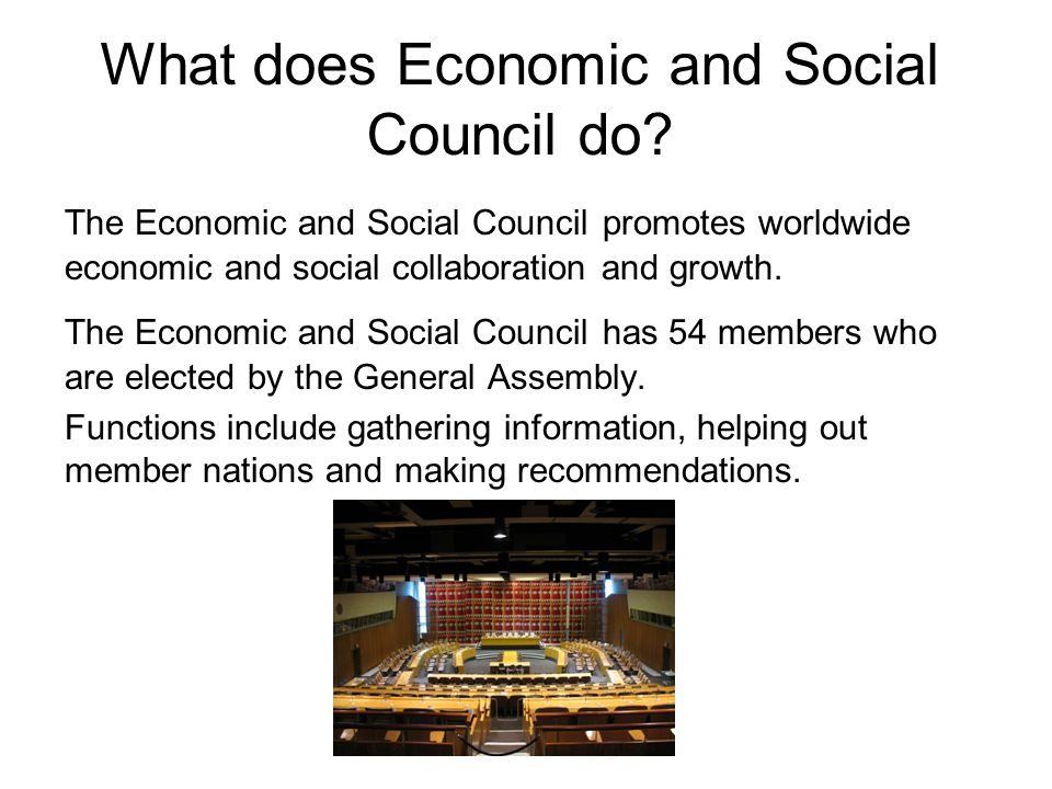 What does Economic and Social Council do.