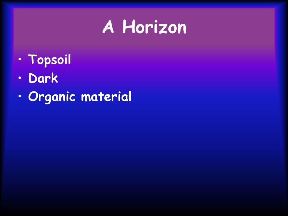 A Horizon Topsoil Dark Organic material