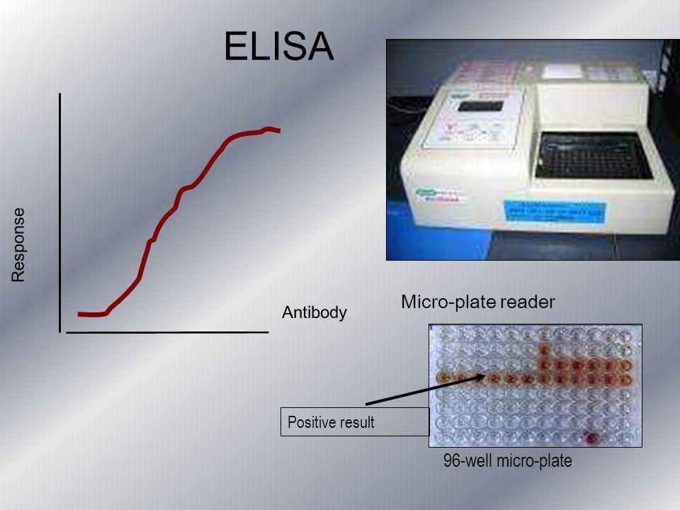 ELISA Antibody Response Micro-plate reader 96-well micro-plate Positive result