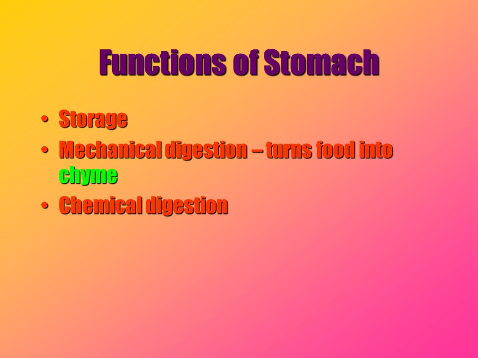 Functions of Stomach StorageStorage Mechanical digestion – turns food into chymeMechanical digestion – turns food into chyme Chemical digestionChemica