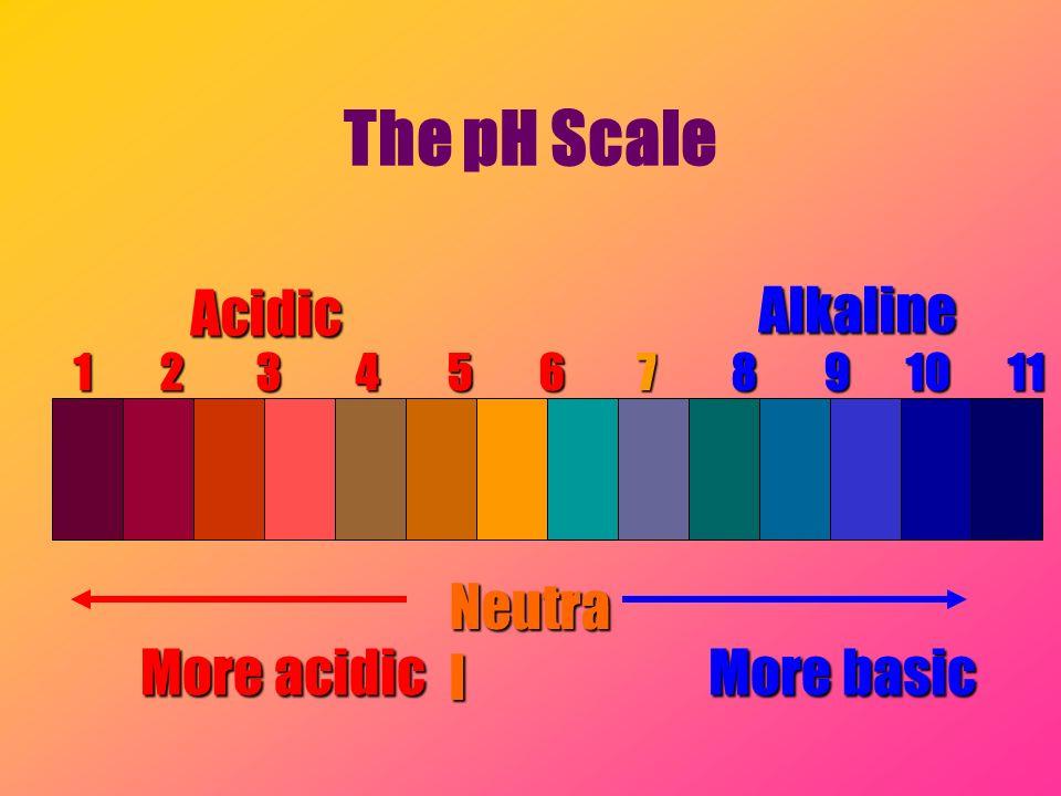 The pH Scale 1 2 3 4 5 6 7 8 9 10 11 12 13 14 AcidicAlkaline Neutra l More acidic More basic