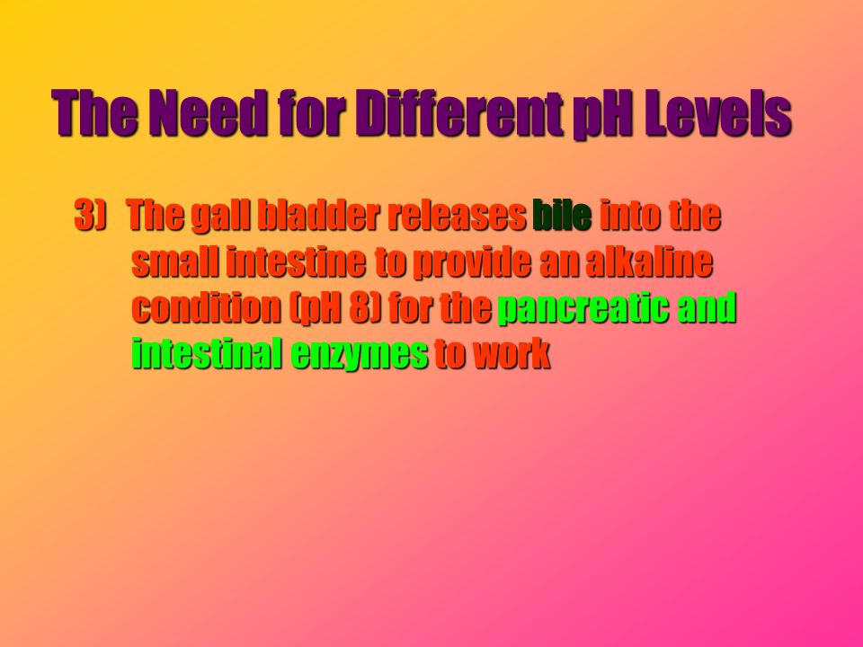 The Need for Different pH Levels 3) The gall bladder releases bile into the small intestine to provide an alkaline condition (pH 8) for the pancreatic