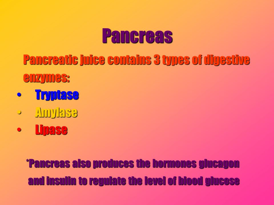 Pancreas Pancreatic juice contains 3 types of digestive Pancreatic juice contains 3 types of digestive enzymes: enzymes: TryptaseTryptase AmylaseAmyla