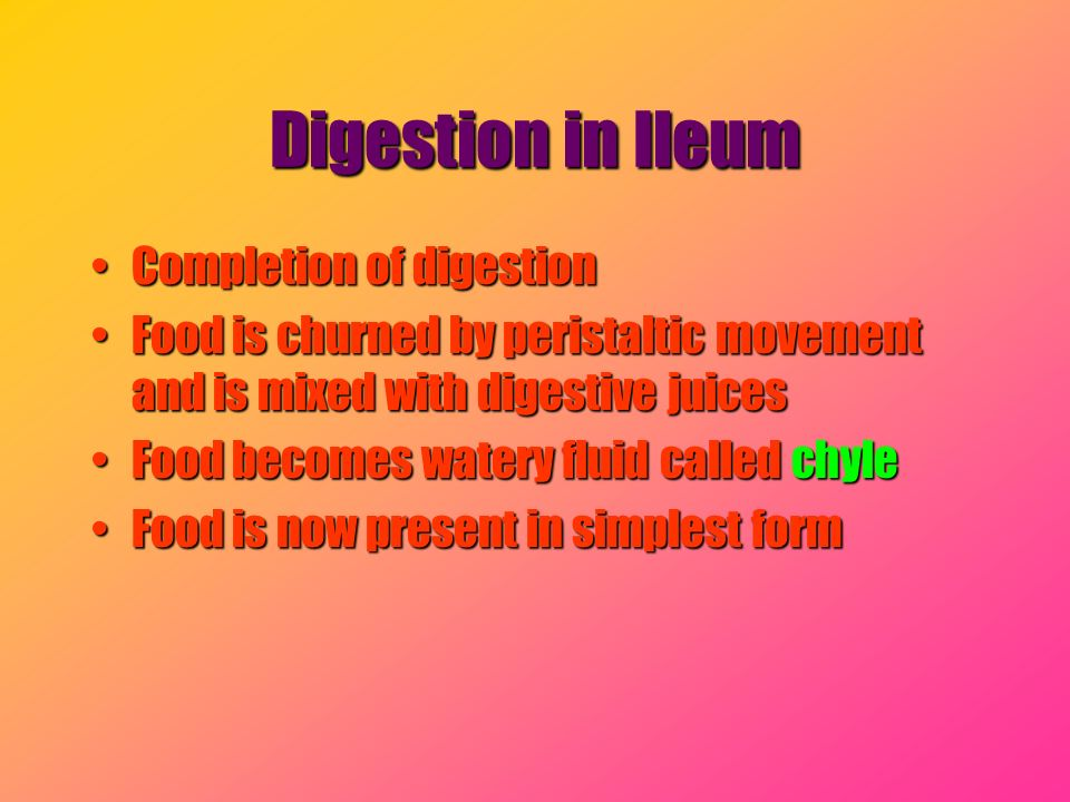 Digestion in Ileum Completion of digestionCompletion of digestion Food is churned by peristaltic movement and is mixed with digestive juicesFood is ch