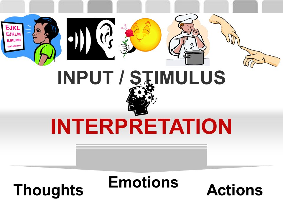 INPUT / STIMULUS INTERPRETATION Thoughts Emotions Actions