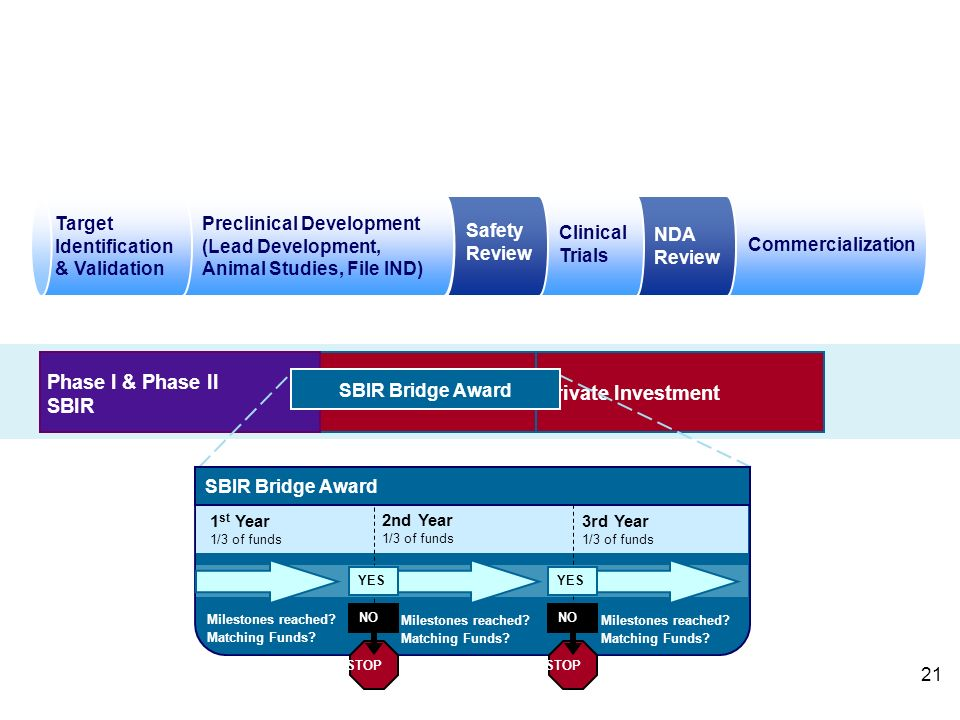 Example: How the Bridge Award Would Apply in the Area of Drug Development Commercialization NDA Review Clinical Trials Safety Review Preclinical Development (Lead Development, Animal Studies, File IND) Target Identification & Validation Private Investment Phase I & Phase II SBIR SBIR Bridge Award 2nd Year 1/3 of funds 3rd Year 1/3 of funds 1 st Year 1/3 of funds Milestones reached.