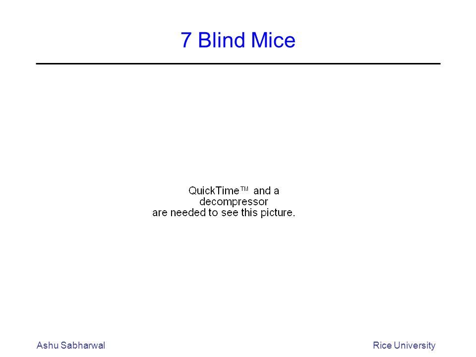 Ashu SabharwalRice University 7 Blind Mice
