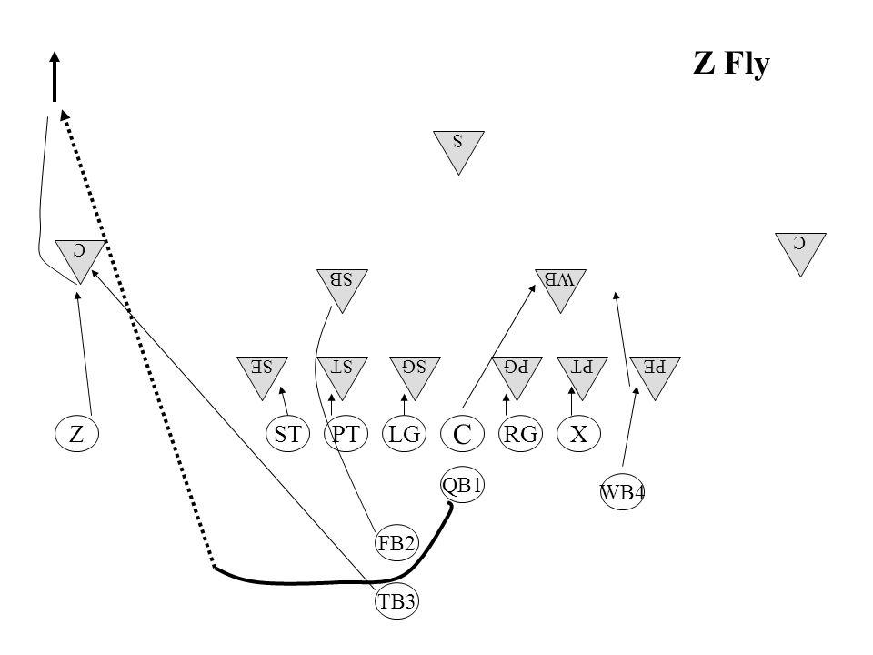 Z Fly C RGLGSTPT WB4 FB2 TB3 QB1 ZX WB C C S SB PEPTSESTSGPG