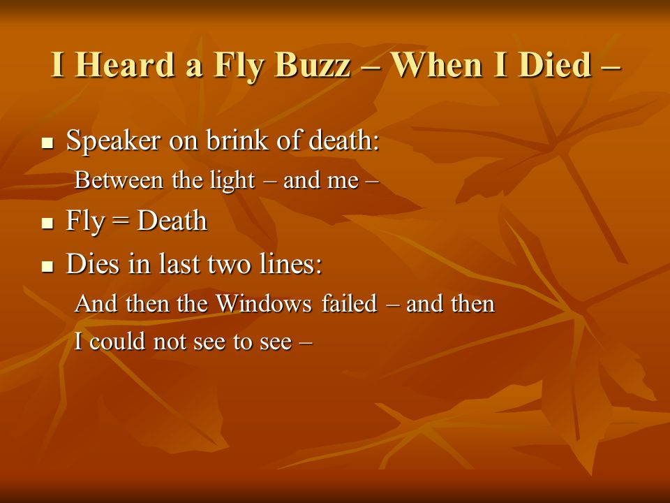 I Heard a Fly Buzz – When I Died – Speaker on brink of death: Speaker on brink of death: Between the light – and me – Fly = Death Fly = Death Dies in