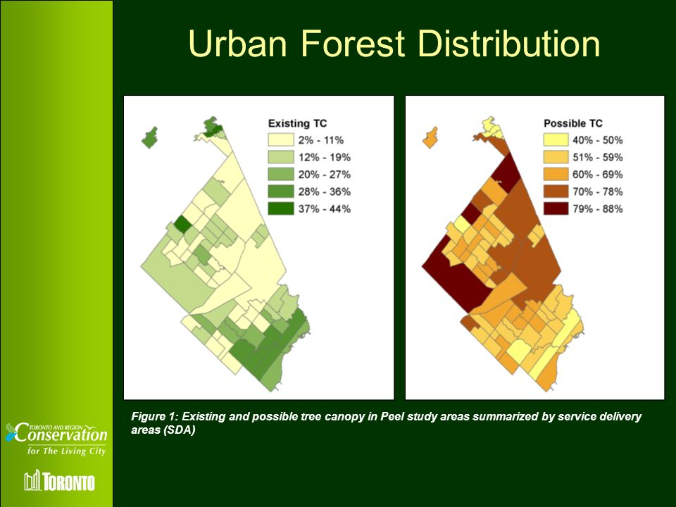 Urban Forest Distribution Text Etc Figure 1: Existing and possible tree canopy in Peel study areas summarized by service delivery areas (SDA)