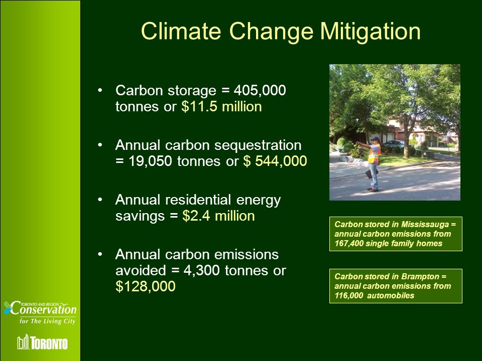 Climate Change Mitigation Carbon storage = 405,000 tonnes or $11.5 million Annual carbon sequestration = 19,050 tonnes or $ 544,000 Annual residential