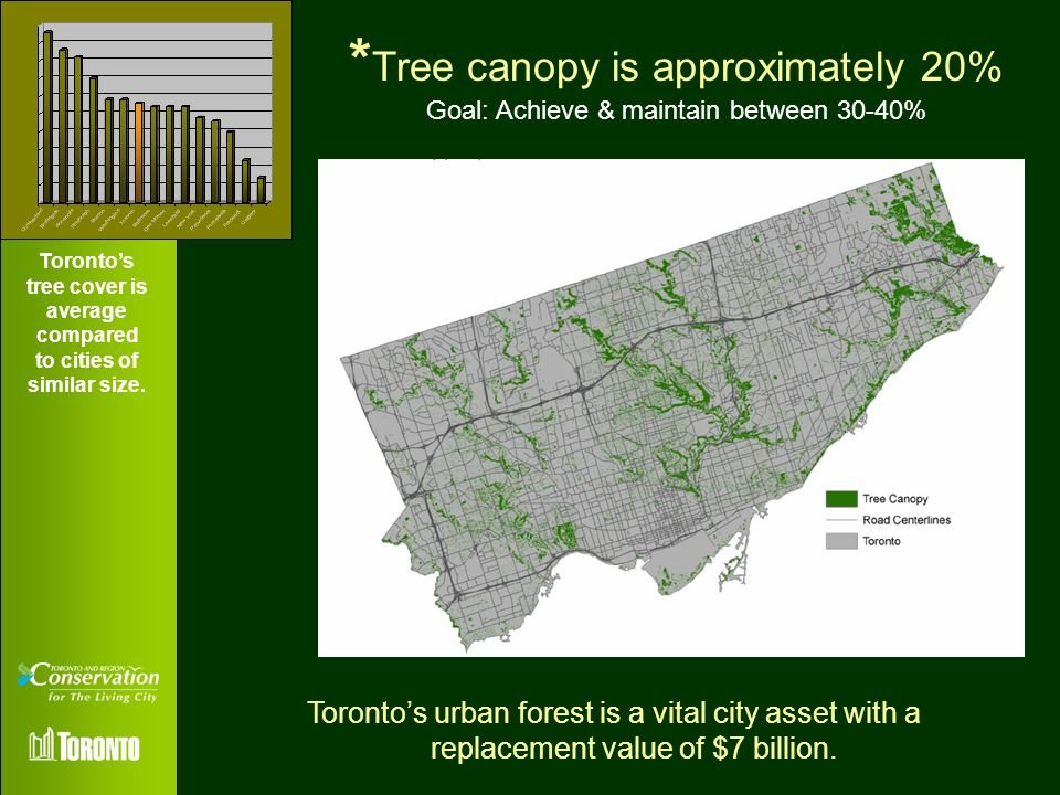 * Tree canopy is approximately 20% Goal: Achieve & maintain between 30-40% Torontos urban forest is a vital city asset with a replacement value of $7