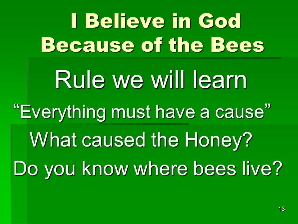 I Believe in God Because of the Bees I Believe in God Because of the Bees Rule we will learn Rule we will learn Everything must have a cause Everything must have a cause What caused the Honey.