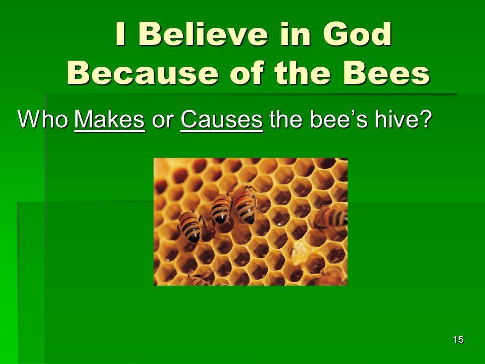 I Believe in God Because of the Bees I Believe in God Because of the Bees Who Makes or Causes the bees hive.